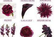 burgundy-wedding-theme-color-scheme5