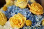 yellow-blue-wedding-2
