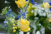 yellow-blue-wedding-5