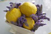 yellow-purple-17